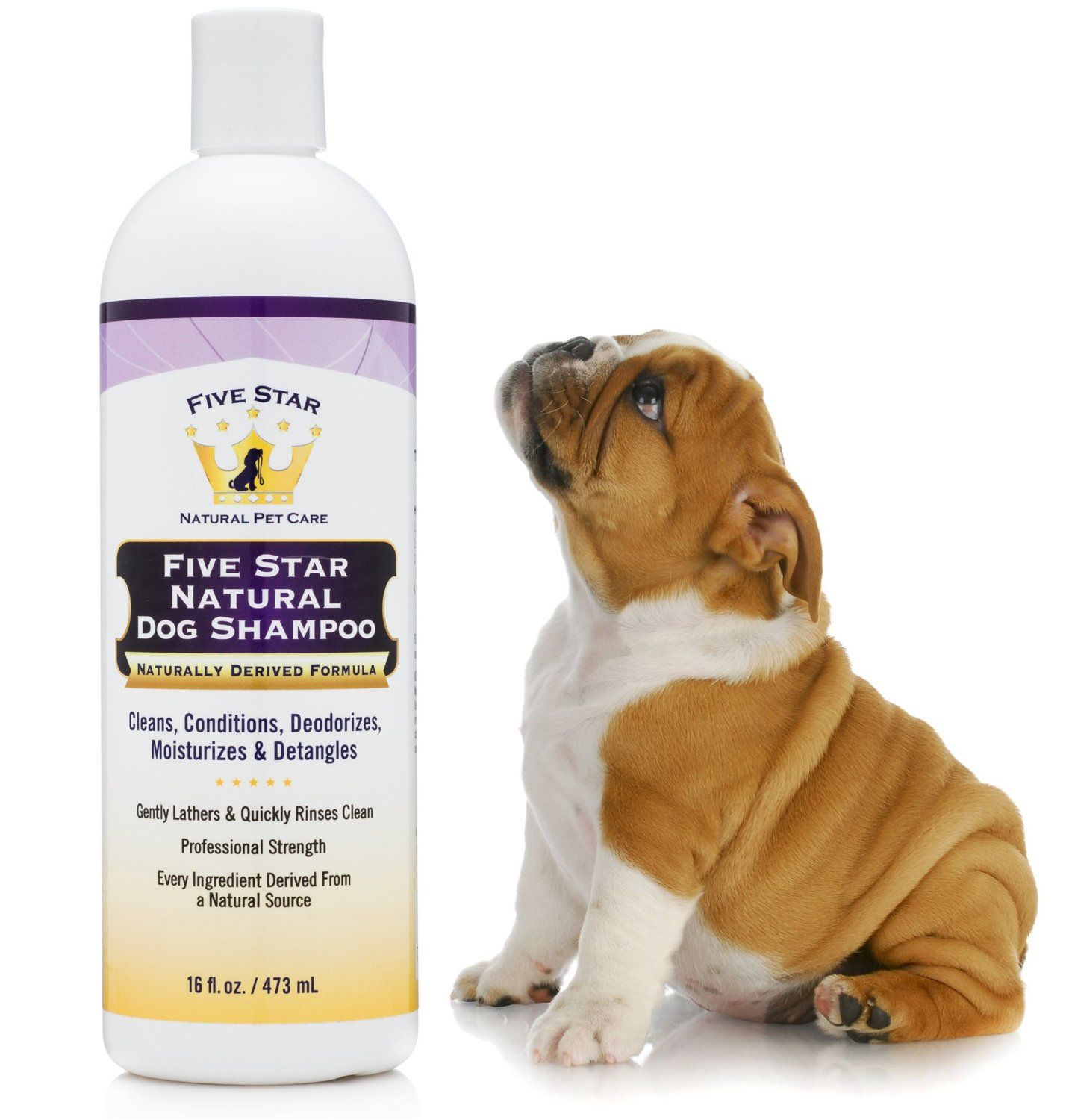 best dog shampoo for itching