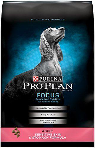 purina dry dog food