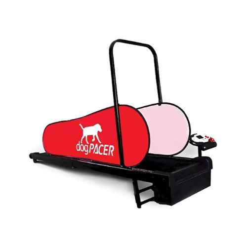 best treadmill for dogs