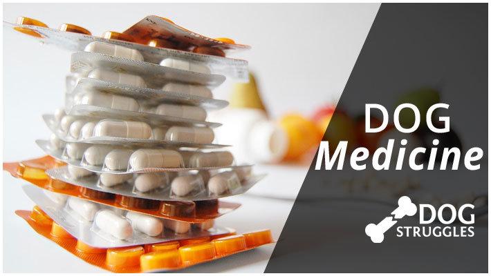 dog medicine category
