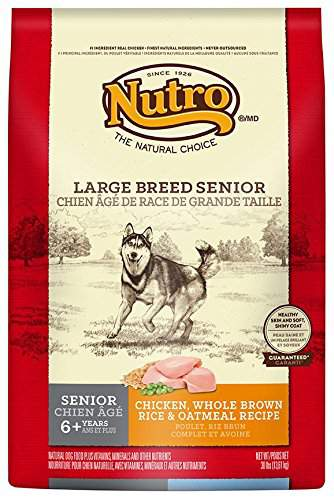 Best Dry Dog Food For Rottweilers