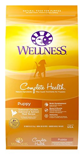 dog shampoo for sensitive skin