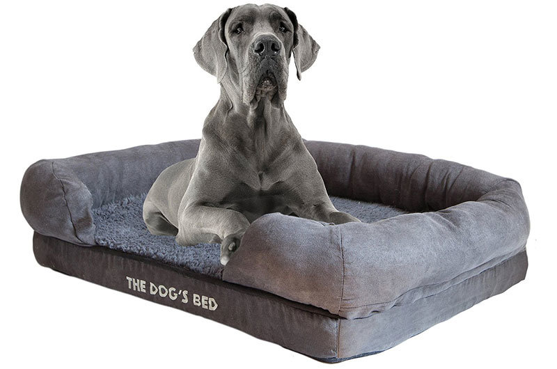 Best Luxurious Dog Bed