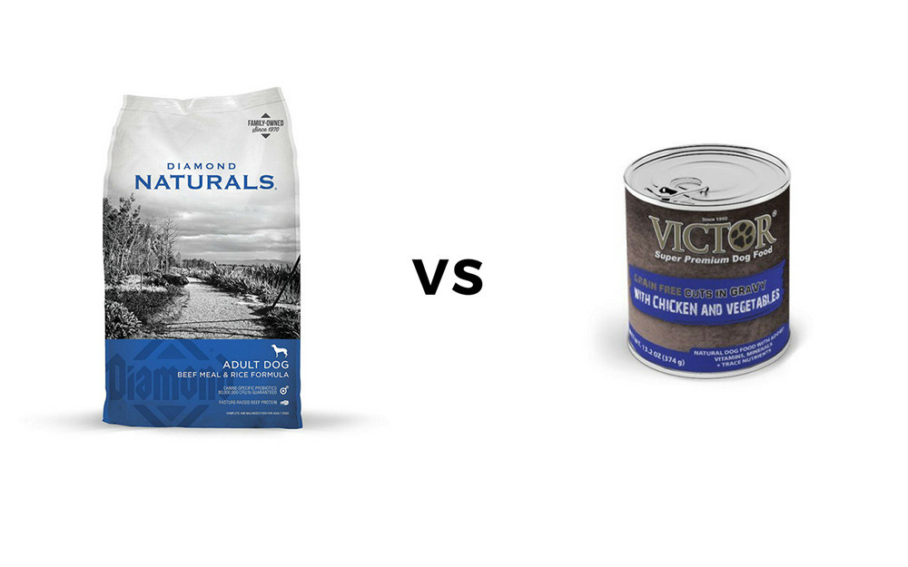 Victor Dog Food Vs Diamond Naturals Reviewed 2019 Dogstruggles