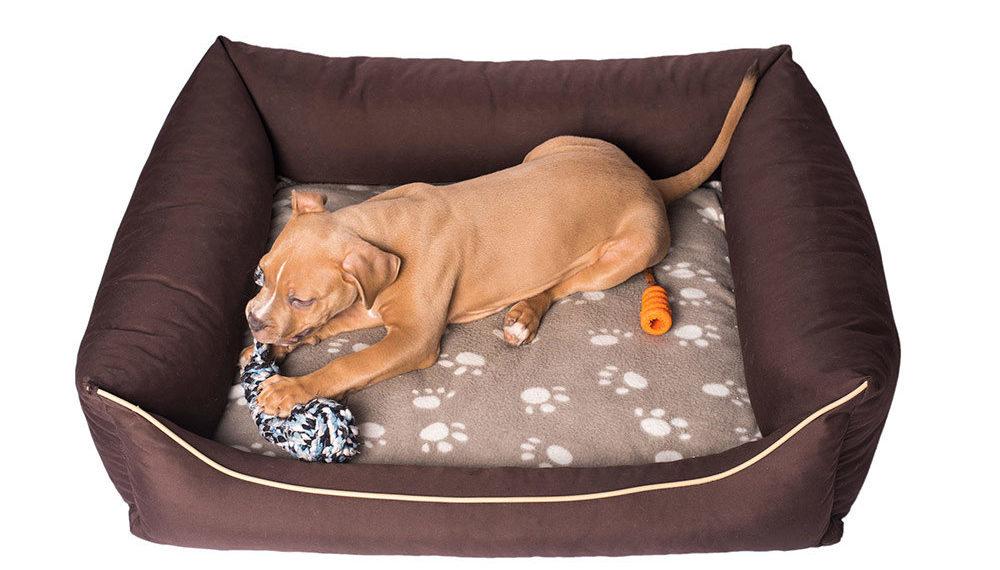 Top 5 Best Chew Proof Dog Beds Durable Amp Indestructible