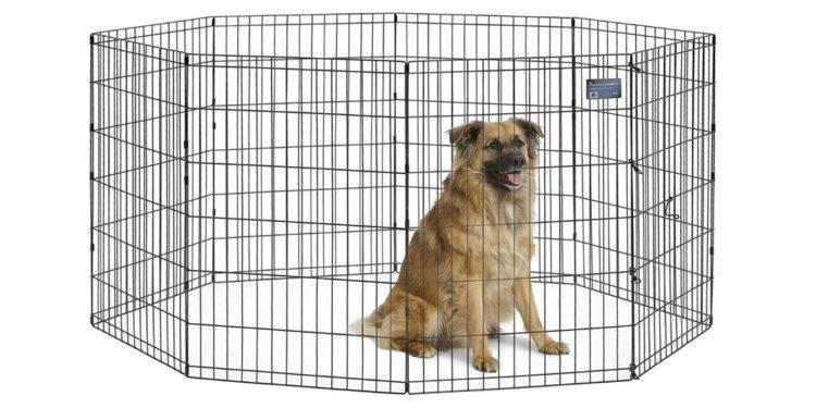 black metal dog fence with dog inside