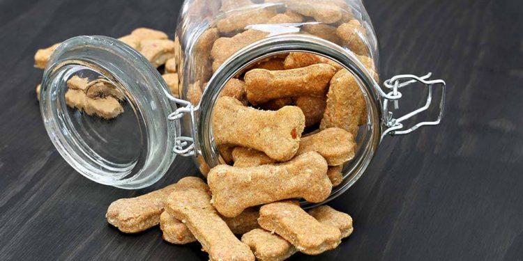 jar with dog bones in it