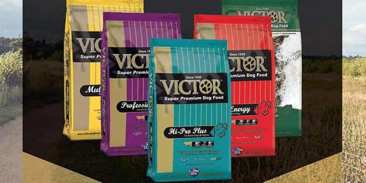 Victor dog food packets