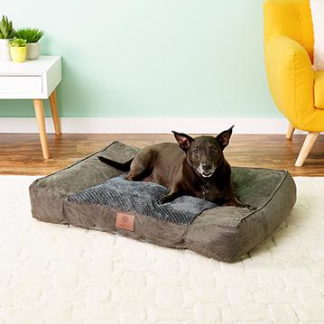 American Kennel Club Sofa
