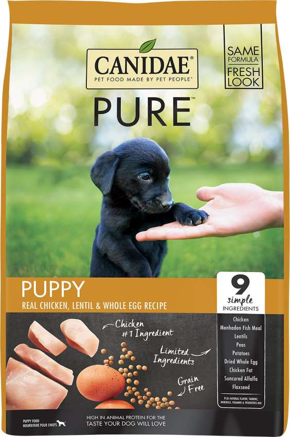 CANIDAE-Puppy