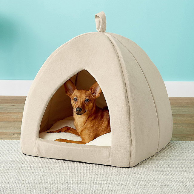 Frisco Tent