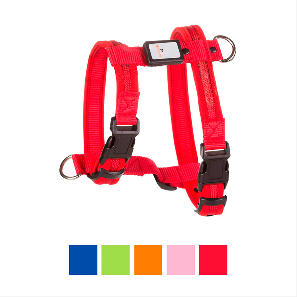 LED Rechargeable Dog Harness