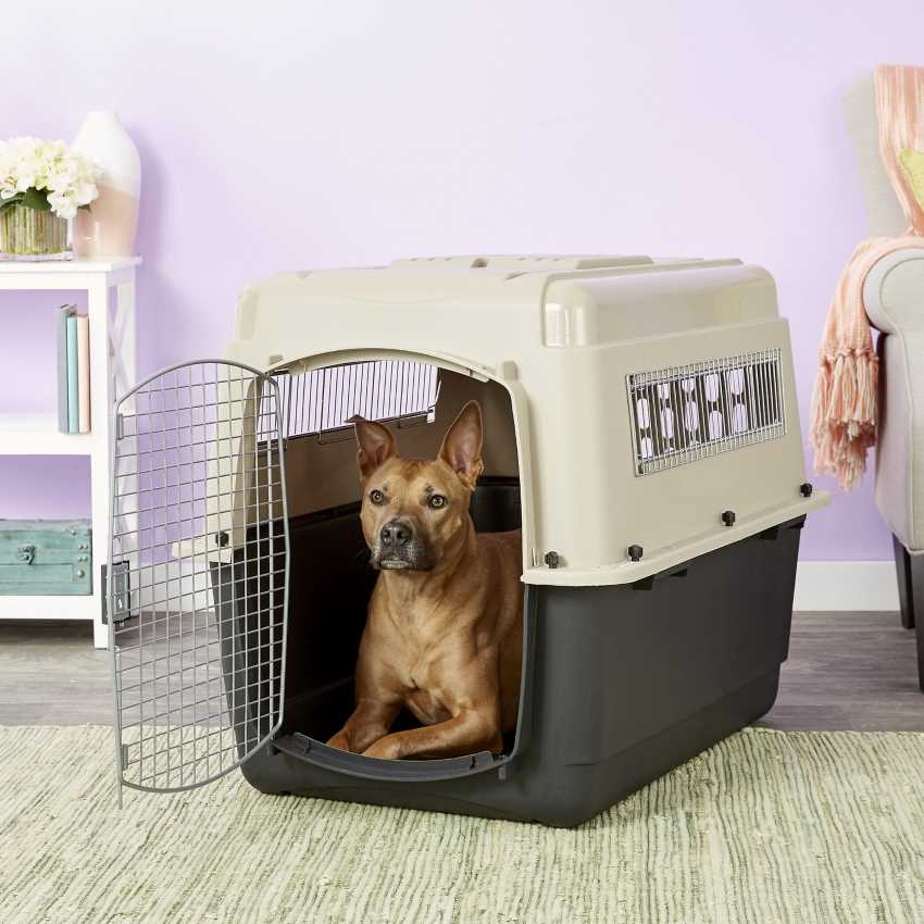 Petmate-Ultra-Vari-Dog-Crate