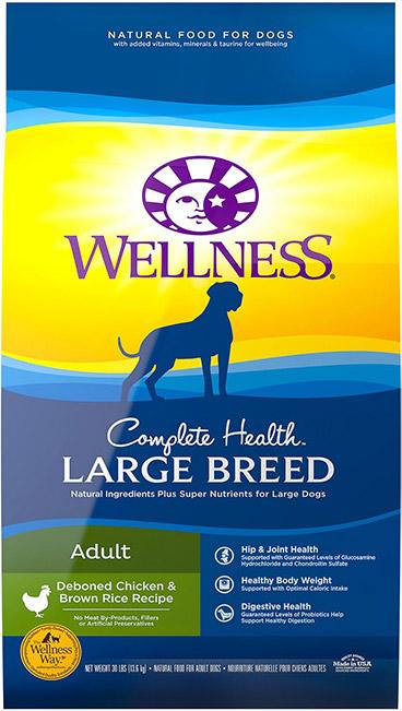 Wellness Complete health